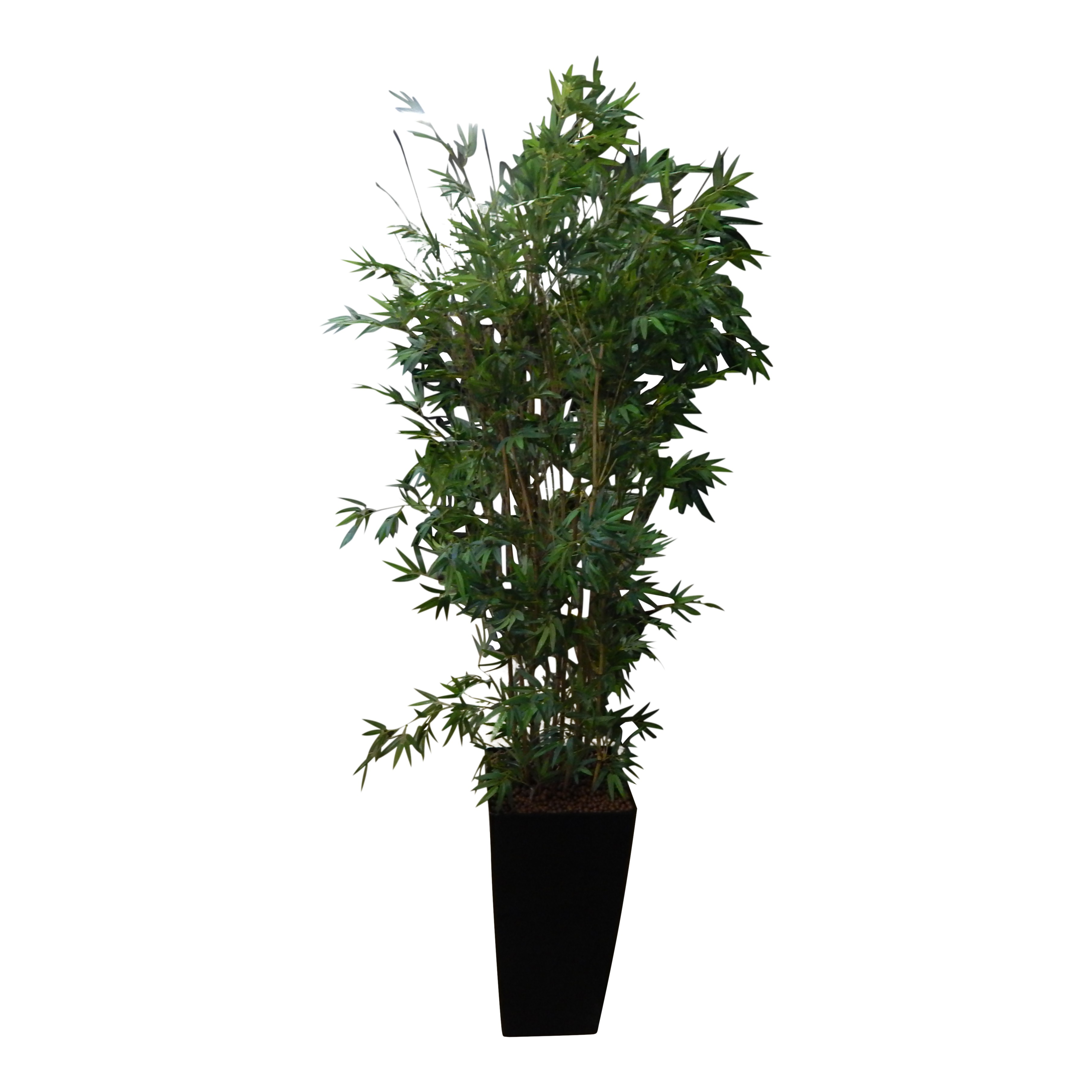 Japanse Bamboe 210cm